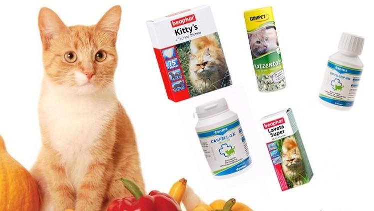 Нужны ли кошке витамины